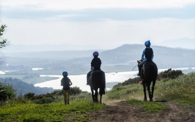 Horse Riding Holidays UK at Lindores – NEW for 2018